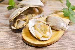 clams on wooden background