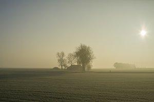 Farm in fog