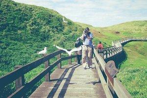 A man photographs the seagulls