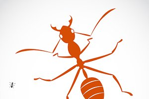 Vector image of an ant