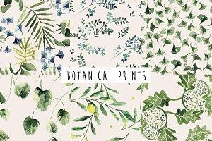 Botanical Pack Seamless Patterns