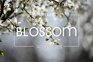140 blossom images - photo pack