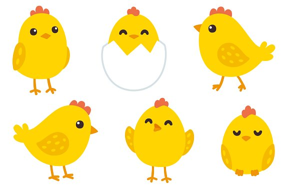 Cute Baby Chickens Patterns Illustrations Creative Market