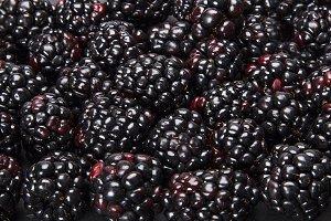 bunch of blackberries