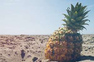 Pineapple and Beach Vibes 1