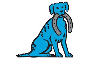Blue Merle Dog Sitting Biting