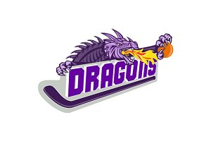 Dragon Fire Hockey Stick Basketball