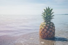 Pineapple and Beach Vibes 6