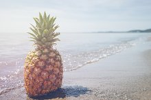 Pineapple and Beach Vibes 7