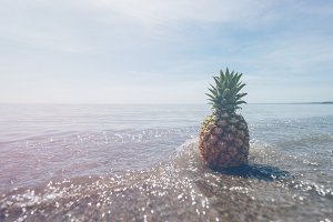 Pineapple and Beach Vibes 8