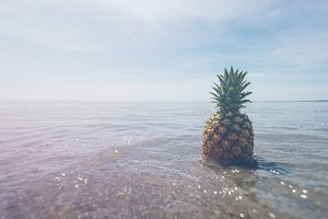 Pineapple and Beach Vibes 9