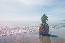 Pineapple and Beach Vibes 10