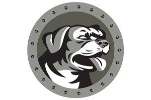 Rottweiler Guard Dog Head Metallic