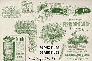 Vintage Garden & Seeds Brushes Set