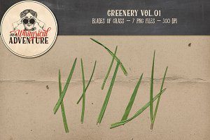 Greenery Vol01 - Grass