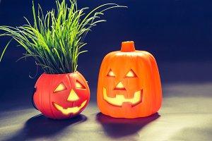 Halloween pumpkin lantern.