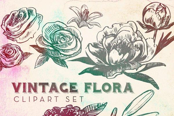 Vintage Flora Vector Clipart Set
