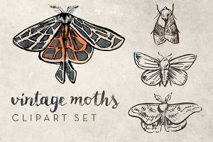 Vintage Moths Clipart Set