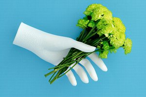 Hand holds green flowers