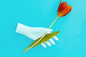 Hand holding Tulip Art