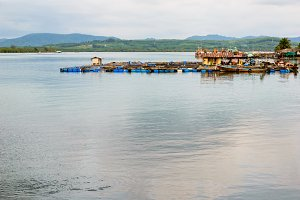 Fish Farm with floating cage