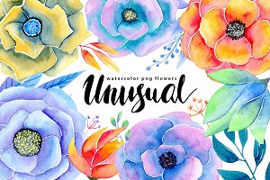 Watercolor flowers 17 png