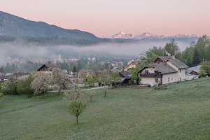 Misty morning in rural countryside
