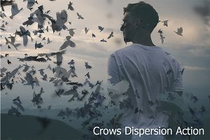 Crows Dispersion Action