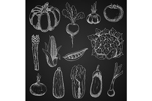 Farm vegetables chalk sketches set