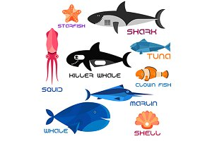 Cartoon marine animals in flat style