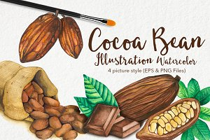 Cocoa Bean & Fruit Watercolor
