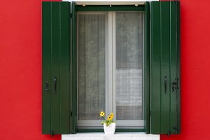 Colorful window with flower pot