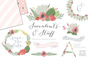 Succulents & Ikat Vector Clipart
