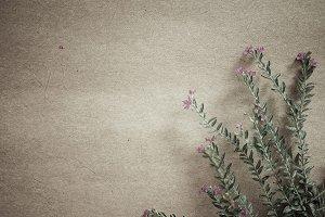 weed flowers in vintage style