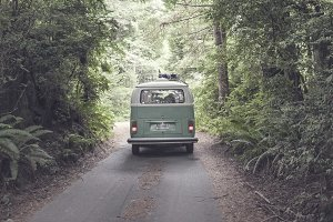 VW Bus Driving Through Woods