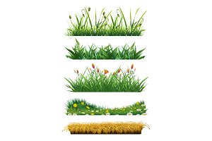 Grass vector elements