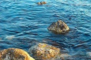 Sea shore and stones.