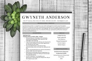 "Professional Resume Template ""Grey"""