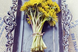 Dandelion on a vintage tray