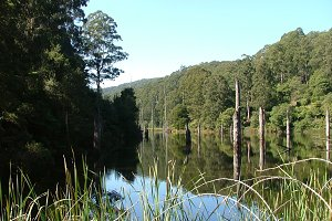 Lake Elizabeth - Australia