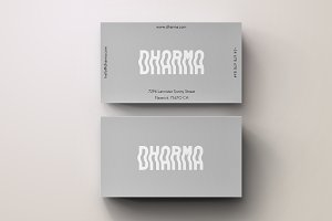 Dharma Modern Grey Business Card