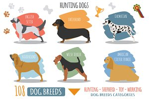 DOG breeds BIG set