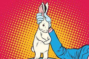 white rabbit in the magicians hands
