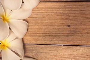 frangipani on wooden