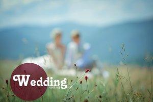 Wedding presets LR style Jose Villa