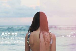 Azalea - 3 Photoshop Actions + Bonus