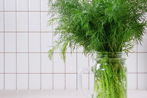 Fresh dill in jar