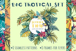 Big Tropical Set: patterns & frames