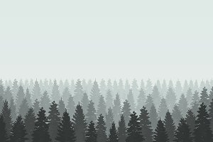 Musterious coniferous forest. Vector