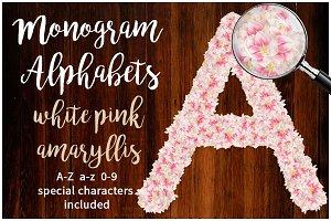 White Pink Amaryllis Alphabets